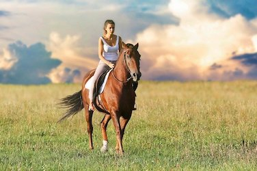 Riding Doesn't Have To Hurt Your Horses Back